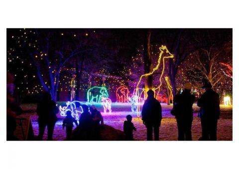 Denver zoo light tickets
